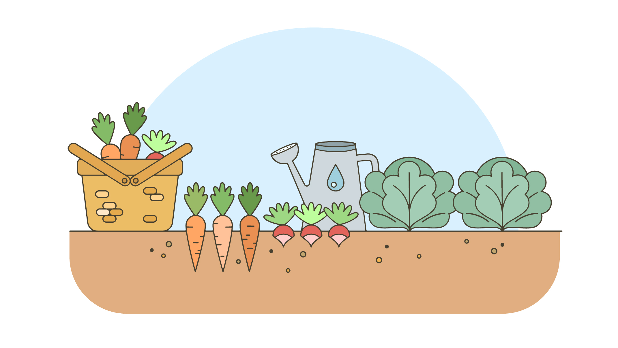 Graphic depicting vegetables growing